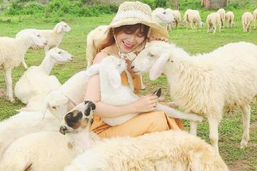 Đi Đồng Cừu Đồng Nai 1 Ngày, Có Vạn Hình 'Sống Ảo' Up Cả Năm Cũng Không Hết!
