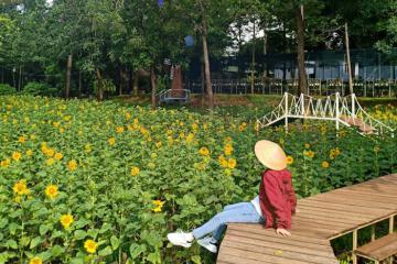 Top những điểm đi trốn gần Sài Gòn cuối tuần cực hot