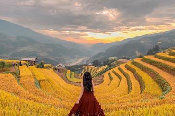 Lạc trôi giữa mùa vàng Mù Cang Chải