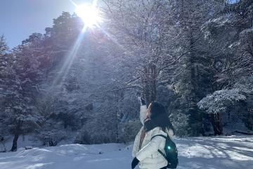 Kinh nghiệm du lịch Lệ Giang - Shangri La 6 ngày cực chi tiết