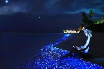 Ngỡ ngàng vẻ đẹp lấp lánh như dải ngân hà tại đảo Vaadhoo Maldives