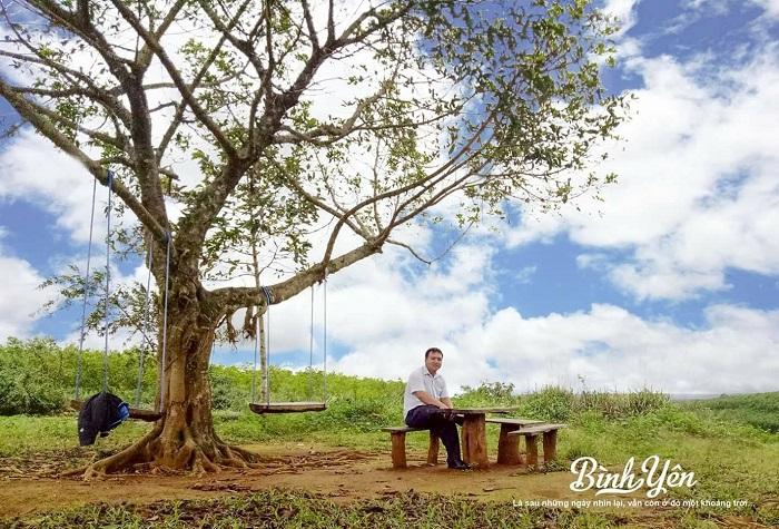 Visit the plateau of Van Hoa Phu Yen - the 2nd 'Da Lat' in Vietnam