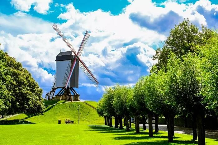 Cối xay gió ở Bruges - địa điểm du lịch lãng mạn ở Bruges