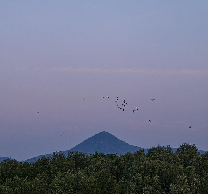 núi non - điểm đến đẹp của Đầm Nại Ninh Thuận