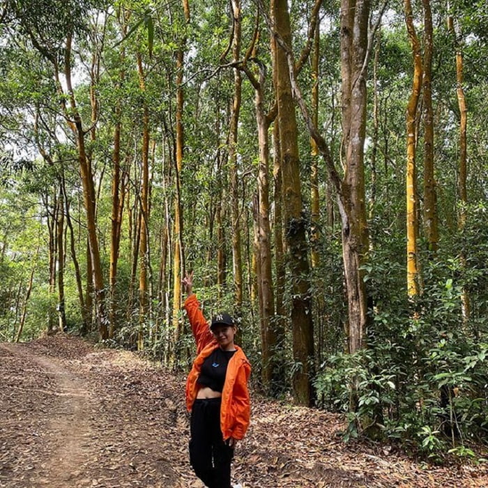 Prepare enough equipment for climbing - Dinh Mountain Vung Tau