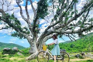 B&U Farm – thiên đường nghỉ dưỡng mộng mơ trong lòng Phú Yên