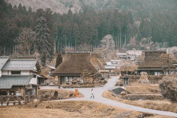 'Hớp hồn' với những ngôi nhà tranh cổ kính ở làng Miyama Kayabuki Nhật Bản