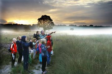 Vườn quốc gia Hoge Veluwe - điểm đến lý tưởng chiêm ngưỡng cảnh đẹp thiên nhiên ở Hà Lan