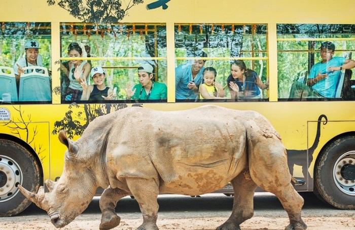 Vườn thú Safari Phú Quốc - tham quan khu vườn thú hoang dã bằng xe bảo hộ