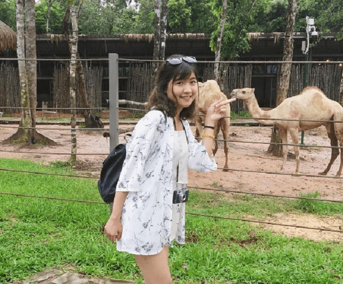 Vườn thú Safari Phú Quốc - chụp hình cùng những con vật tại vườn thú