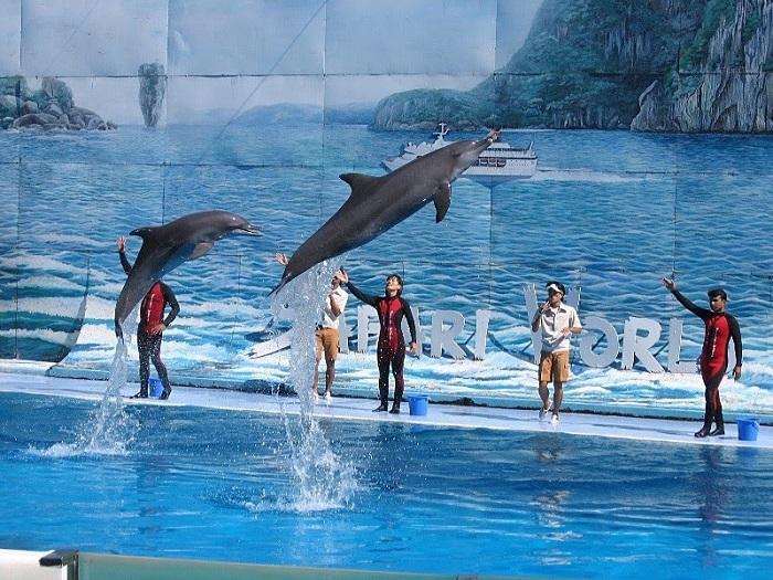 Vườn thú Safari Phú Quốc - những show diễn đặc sắc