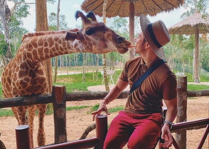 Vườn thú Safari Phú Quốc - tìm hiểu thế giới động vật phong phú