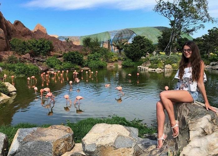 Vườn thú Safari Phú Quốc - tham quan khu bán hoang dã
