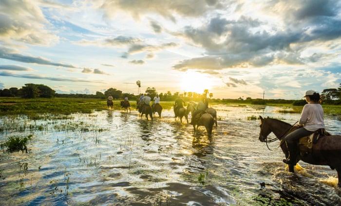 Ghé thăm một trang trạiđịa phương - Du lịch Pantanal