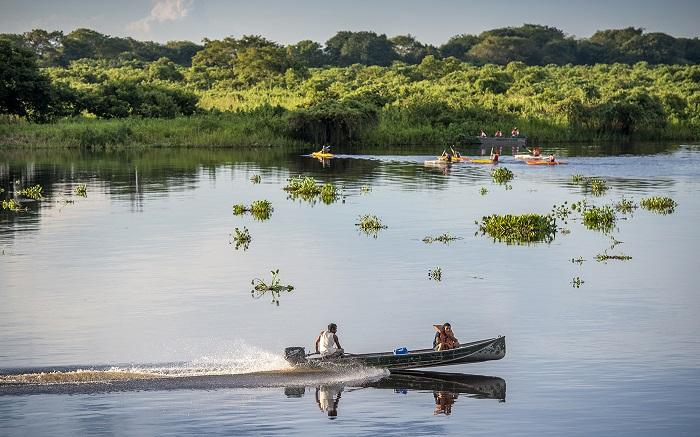 Du lịch bằng thuyền ở Pantanal - Du lịch Pantanal