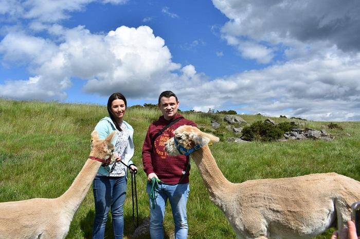 Llama Trek - Thung lũng thiêng Peru