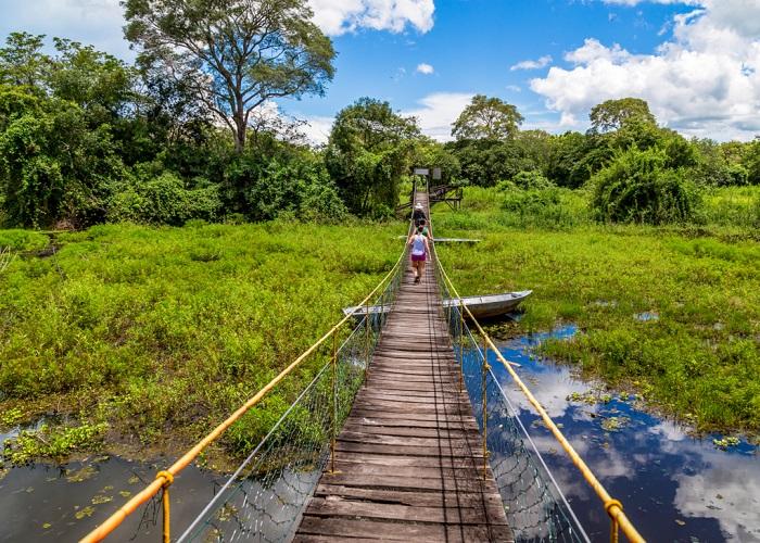 Đi bộ đường dàiở Pantanal - Du lịch Pantanal