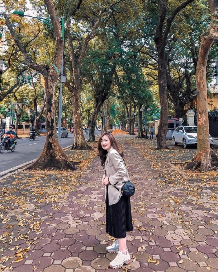 đường Phan Đình Phùng - điểm ngắm mùa thu Hà Nội lãng mạn như phim
