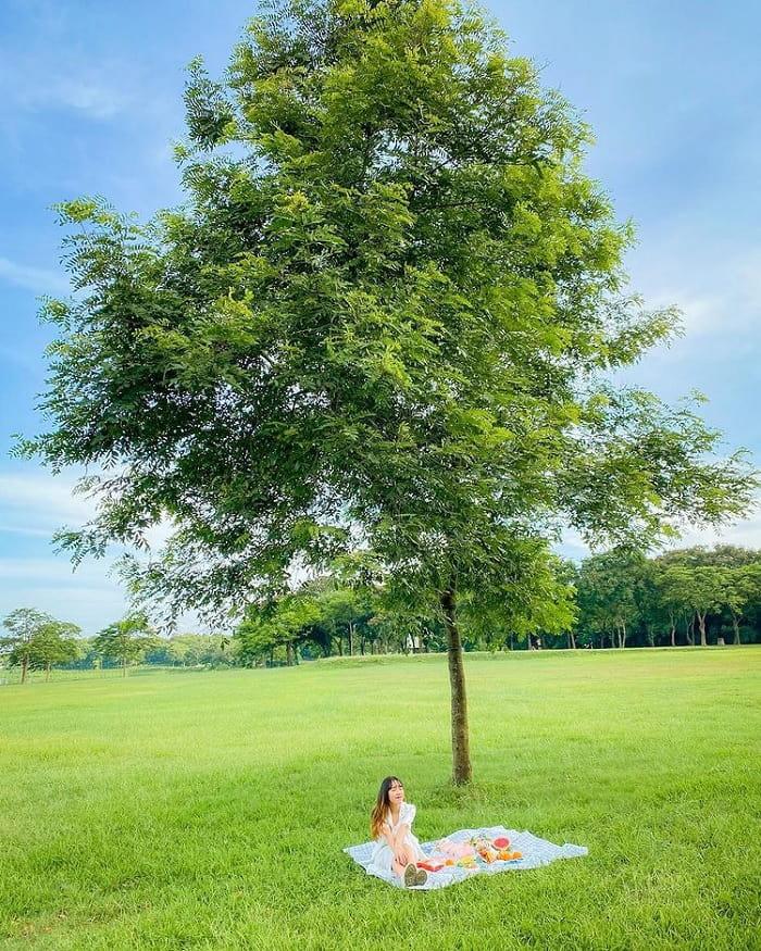 công viên Yên Sở -  địa điểm picnic ở Hà Nội 'hot rần rần'