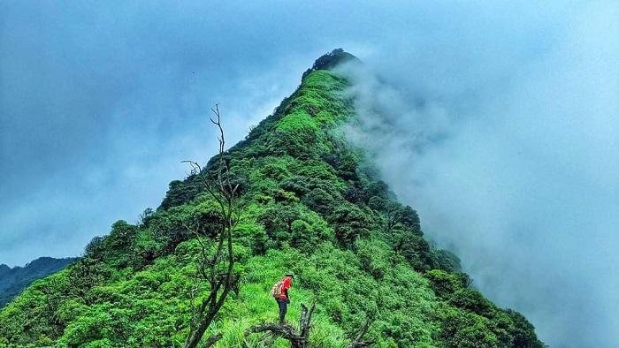 Vẻ đẹp thiên nhiên hoang sơ và hùng vĩ của núi Phia Po