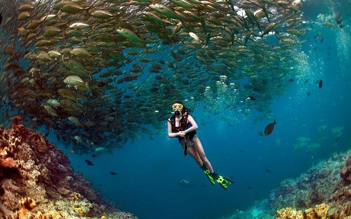 Các trải nghiệm khi du lịch đảo Sipandan