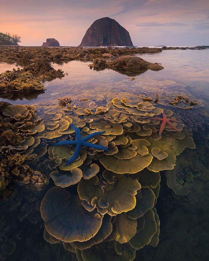 Hon Yen beautiful islands in Phu Yen