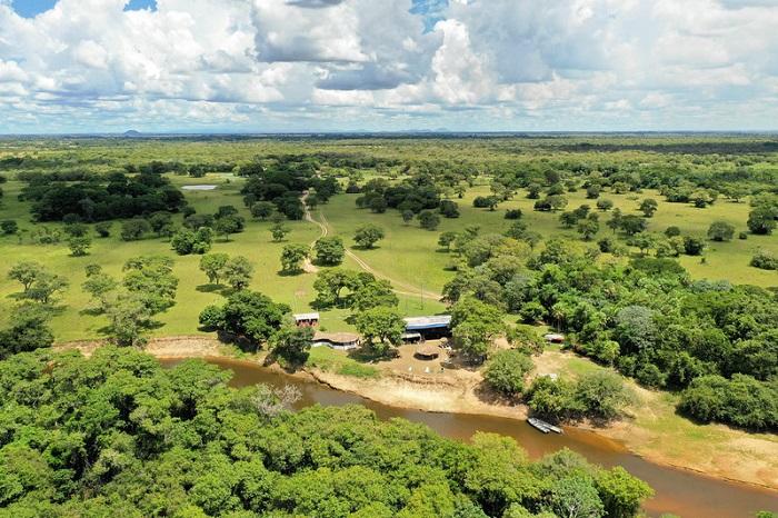 Vùng hoang dã của Pantanal - Du lịch Pantanal