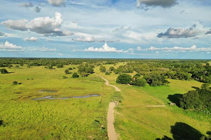 Du lịch Pantanal