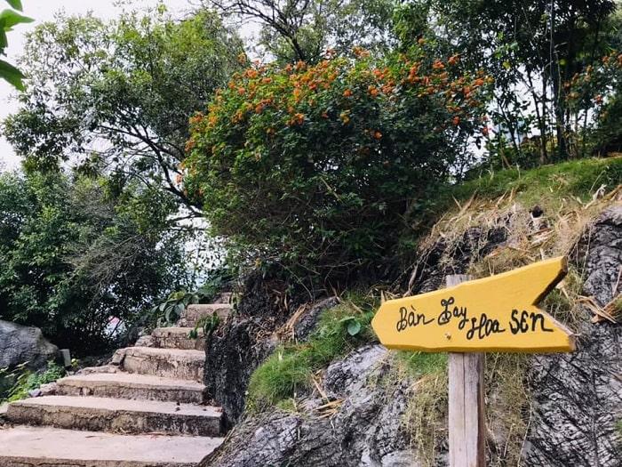 đường lên bàn tay hoa sen khu du lịch núi Mộc