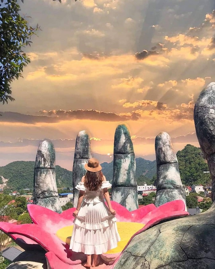bàn tay hoa sen núi Mộc