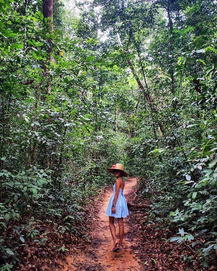 Ecotourism area in Phu Quoc - Phu Quoc national park live virtual