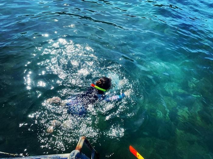 Lặn ngắm san hô ở Bãi Rạng Đà Nẵng