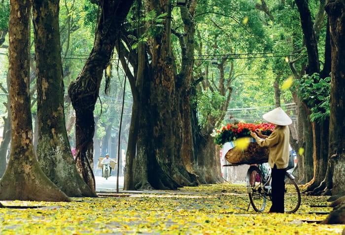 Tháng 10 nên du lịch ở đâu đẹp - Mùa thu Hà Nội