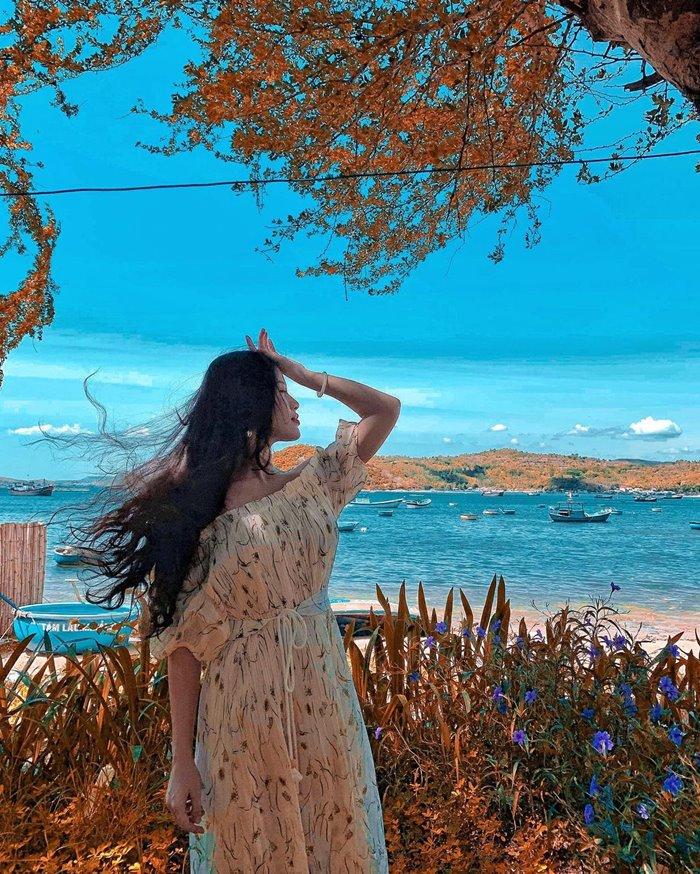 Nhat Tu Son beautiful islands in Phu Yen