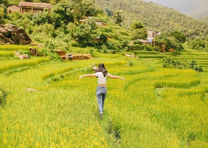 Mang Ri Kon Tum rice terraces
