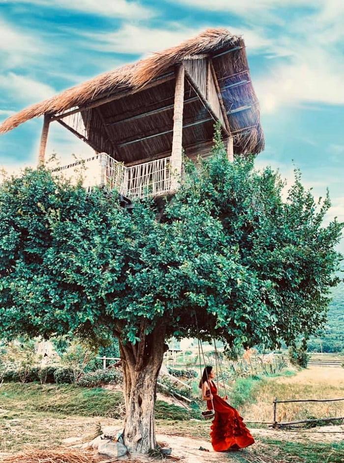 Đôi nét về phim trường Du Long Ninh Thuận