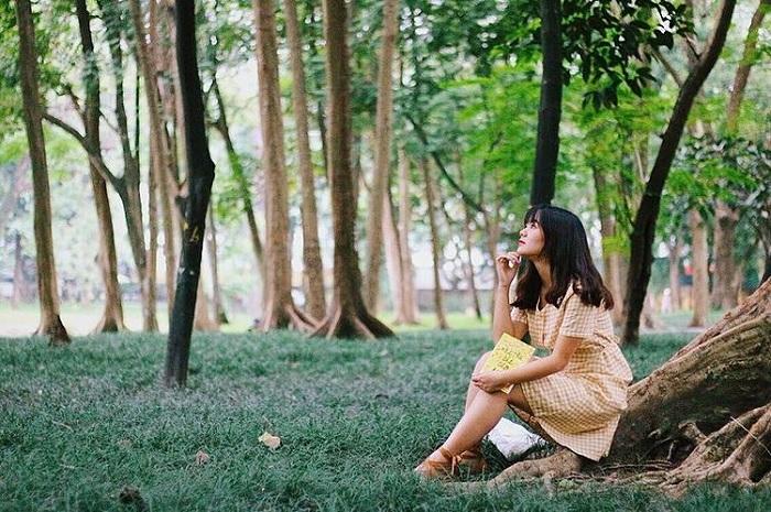 Rừng cây - khung cảnh đẹp tại Vườn bách thảo Hà Nội