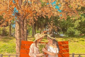 'Bỏ túi'ngay những điểm ngắm mùa thu Hà Nội lãng mạn như phim