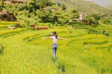 Du ngoạn ruộng bậc thang Măng Ri đón mùa vàng rực rỡ xứ cao nguyên