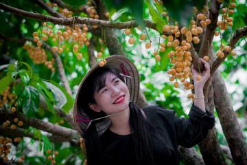 Kinh nghiệm đi vườn trái cây Vàm Xáng Cần Thơ ăn trái cây, vui chơi thả ga