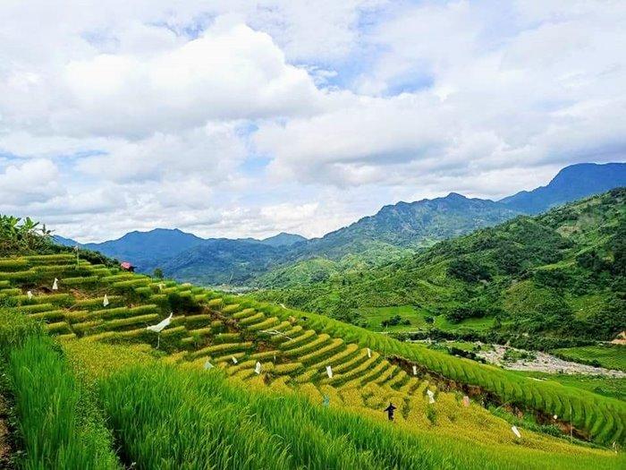 Mang Ri terraced fields
