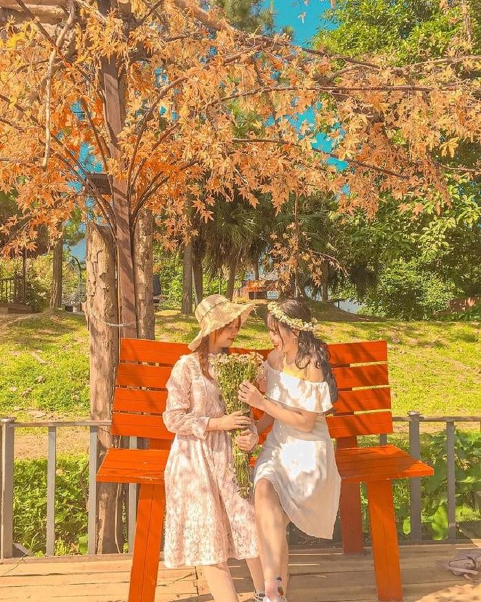 bãi đá sông Hồng - điểm ngắm mùa thu Hà Nội lãng mạn như phim