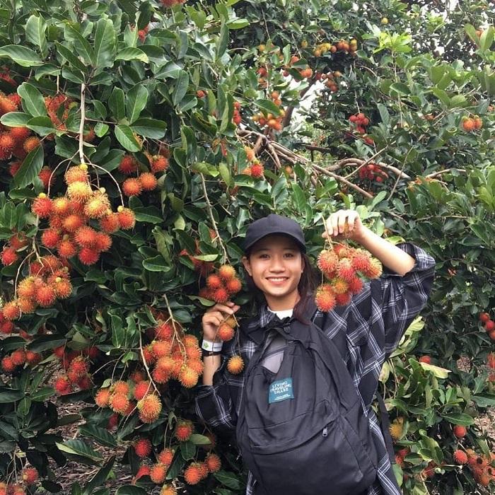 Go Chua Tay Ninh fruit garden - virtual life