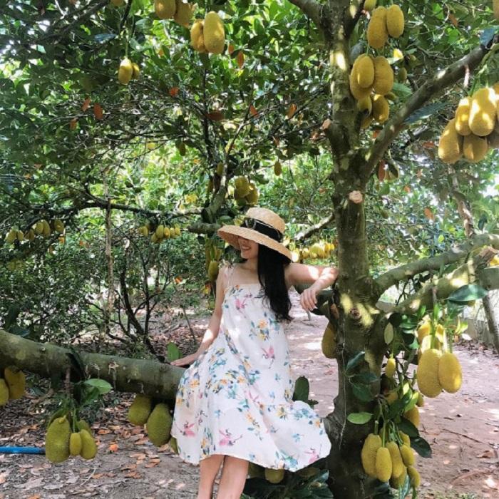 vườn trái cây Vàm Xáng Cần Thơ - thiên đường các loại trái cây