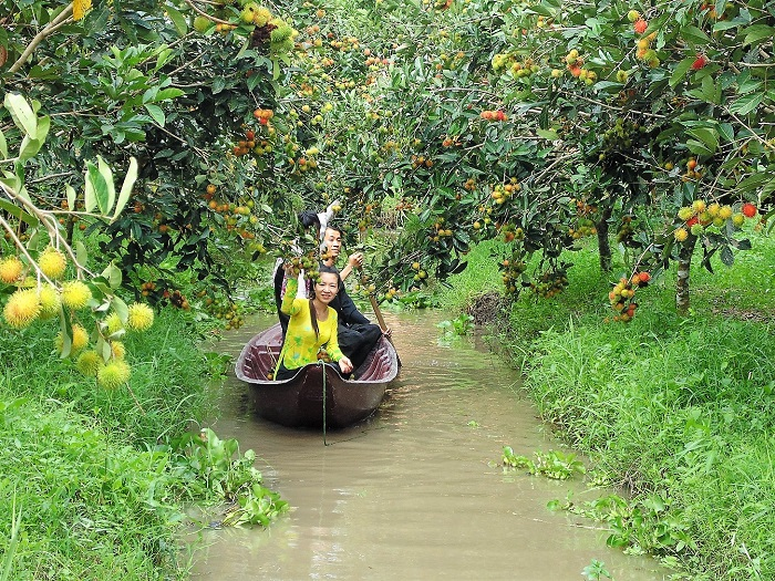vườn trái cây Vàm Xáng Cần Thơ - đi xuồng ngắm cảnh