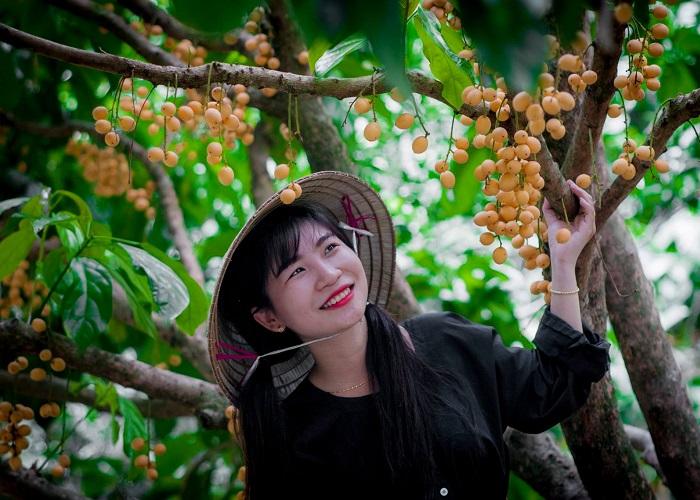 vườn trái cây Vàm Xáng Cần Thơ - đủ các loại trái cây