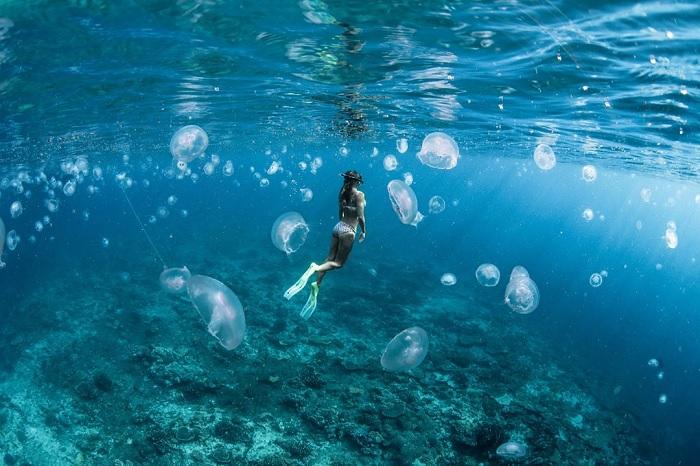 Khám phá những hòn đảo đẹp nhất nước Úc