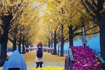 Du lịch Hàn Quốc tháng 10 nên đi đâu?