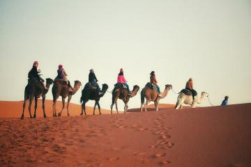 Trải nghiệm lễ hội văn hóa du mục Sahara tại Tusinia
