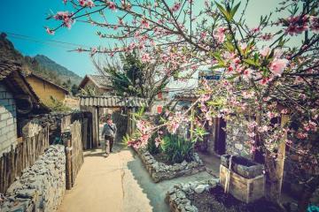 Lạc vào thế giới cổ tích làng Lô Lô Chải Hà Giang
